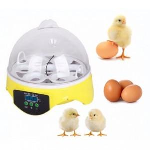 Comprar Incubadora Mini  7 Huevos Gallina Pollo Pato Aves
